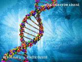 AÖL Biyoloji 3 Dersi
