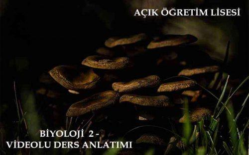 AÖL Biyoloji 2 Dersi