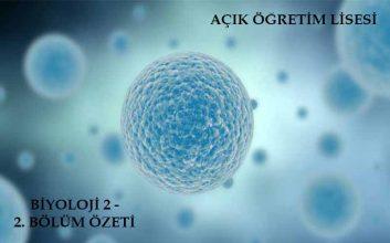 AÖL Biyoloji 2 Kitabı