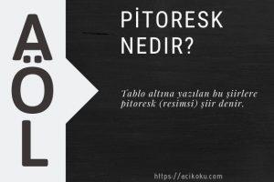 pitoresk anlamı nedir