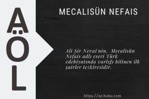 Mecalisün Nefais