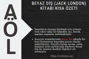 Beyaz Diş (Jack London) Kitabı Kısa Özeti