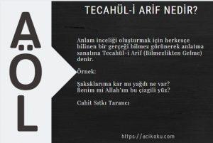 Tecahül-i Arif ne demek
