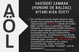 Vadideki Zambak (Honore De Balzac) Kitabı Kısa Özeti