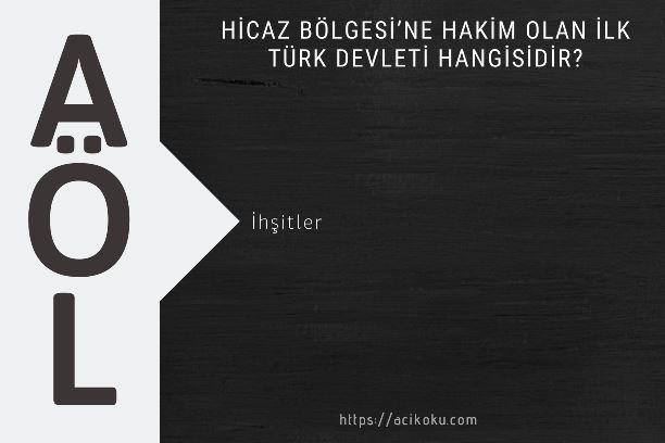 Hicaz Bölgesi'ne hakim olan ilk Türk devleti hangisidir?