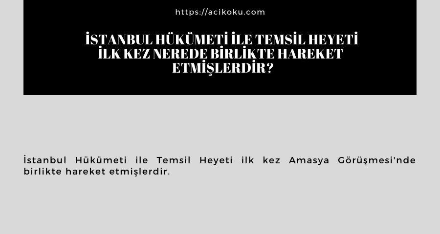 İstanbul Hükümeti ile Temsil Heyeti ilk kez nerede birlikte hareket  etmişlerdir?