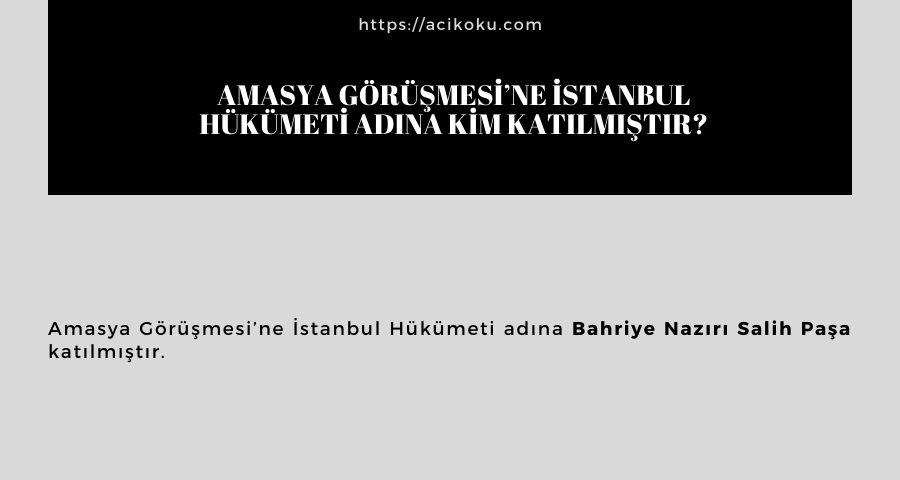 Amasya Görüşmesi'ne İstanbul Hükümeti adına kim katılmıştır?