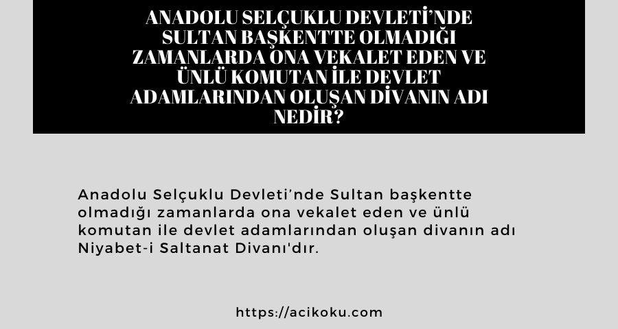 Anadolu Selçuklu Devleti'nde Sultan başkentte olmadığı zamanlarda ona vekalet eden ve ünlü komutan ile devlet adamlarından oluşan divanın adı nedir?