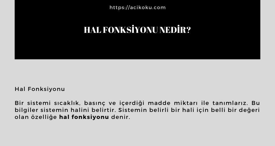 Hal Fonksiyonu nedir?