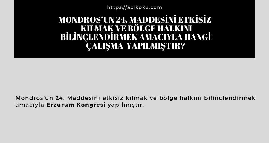 Mondros'un 24. Maddesini etkisiz  kılmak ve bölge halkını bilinçlendirmek amacıyla hangi çalışma  yapılmıştır?