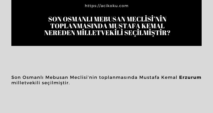 Son Osmanlı Mebusan Meclisi'nin toplanmasında Mustafa Kemal nereden milletvekili seçilmiştir?