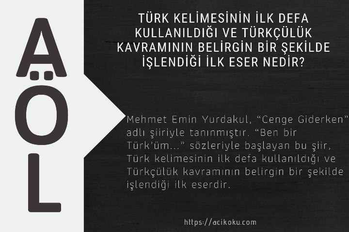 Türk kelimesinin ilk defa kullanıldığı ve Türkçülük kavramının belirgin bir şekilde işlendiği ilk eser nedir?
