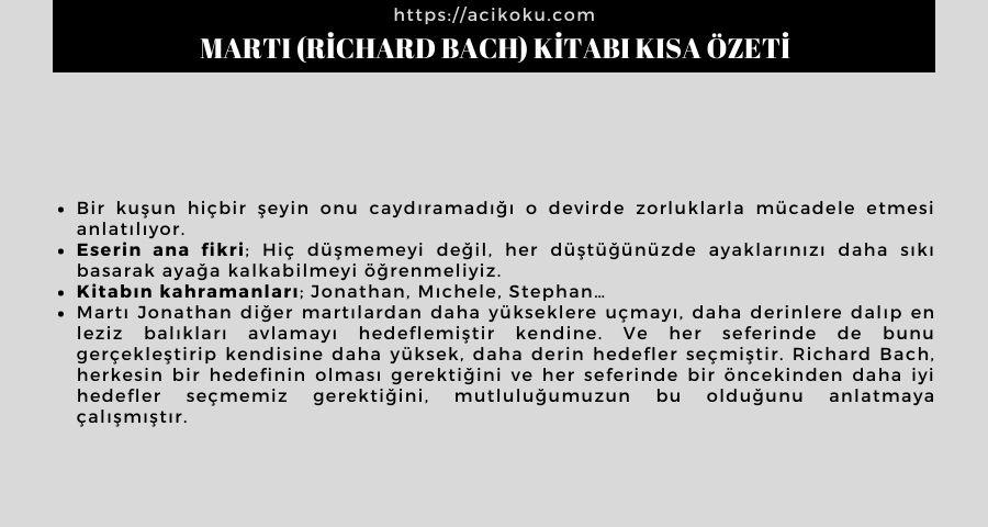Martı (Richard Bach) Kitabı Kısa Özeti